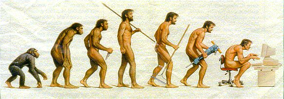 evolution picture